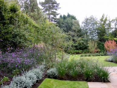 Finished planting in Oxshott