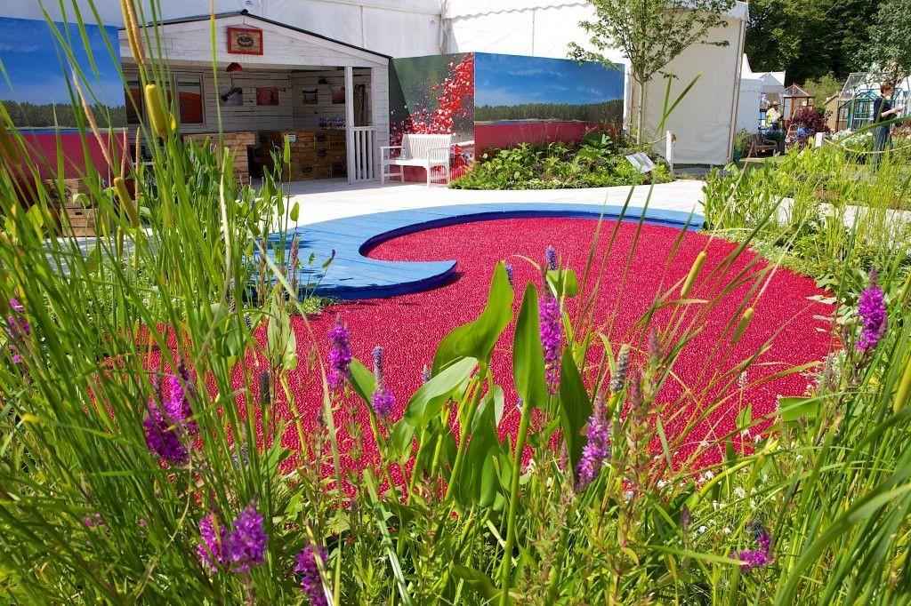 ocean spray garden