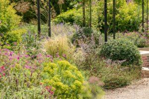 Perennials border in the Exbury Centenary Garden, Hampshire